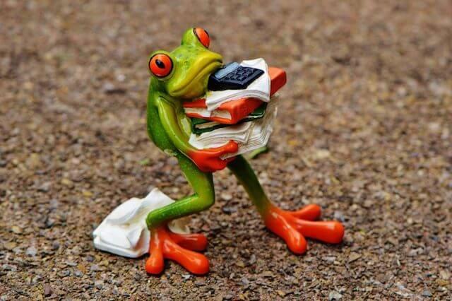 Walking plastic frog